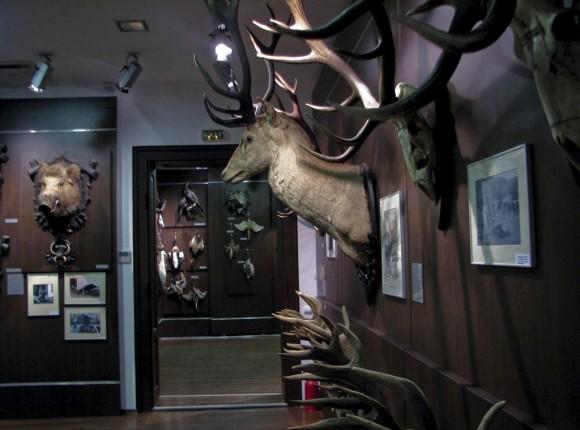 "Muzeul de Vanatoare ""August Von Spiess"", Sibiu"